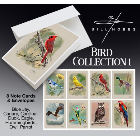 Bird Collection 1 - Note Cards